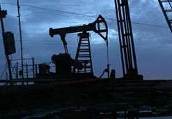 ABDnin ham petrol üretimi azaldı