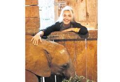 Yavru fili evlat edindi