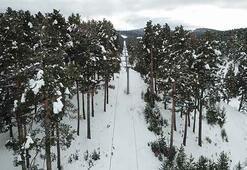 Cıbıltepe yeni kayak sezonunda iddialı