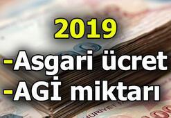 Asgari ücret zammı ne kadar 2019 yılı asgari ücret ne kadar
