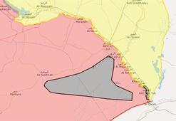 DEAŞ Suriyedeki son kalesini kaybetti