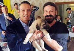 Ali Koça kangal köpeği hediye edildi