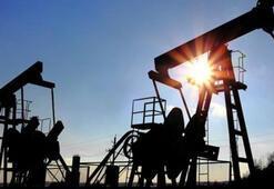 Petrol fiyatlarının seyri ekonomik göstergeleri destekleyecek