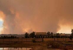 Ülke şokta Yangınlara binden fazla itfaiyeci müdahale ediyor