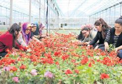 'Muğla çiçeğin merkezi olacak'