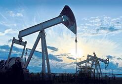 TPAO Marmara'da  petrol arayacak