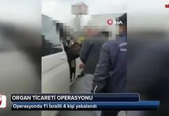 Esenyurtta organ ticareti operasyonu: 1'i İsrailli 4 kişi yakalandı