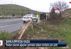 Şanlıurfada kaza