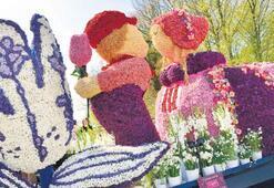 Hollanda'nın bahar festivali Bloemencorso