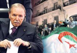 Cezayir'deki istifanın nedeni 'sağduyu' imiş