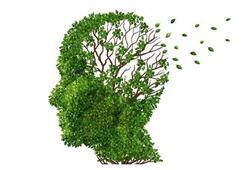 Her unutkanlık Alzheimer mı