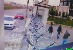 Ankaradaki köpek katliamına ilişkin görüntüler ortaya çıktı