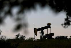 ABDnin ham petrol stokları arttı