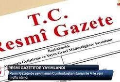 12 Nisan 2019 Türkiye ve Dünya Gündemi (Sabah Bülteni)