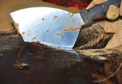 41 çeşit baharatla hazırlanan mesir macunu