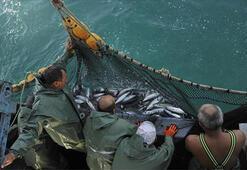 Karadenizde balık sezonu bereketli bitiyor