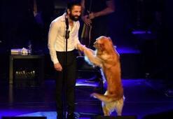 Geçtiğimiz günlerde konsere köpeği ile katılarak hafızalardan silinmeyecek bir konsere imza atan şarkıcı kimdir
