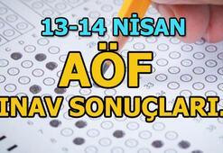 AÖF sınav sonuçları ne zaman açıklanacak 2019 AÖF sınav sonuçları tarihi...