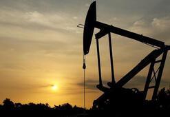 `74 dolar civarında petrol varil fiyatı adil`