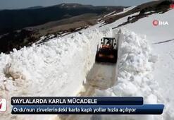 Ordunun zirvelerindeki karla kaplı yollar hızla açılıyor