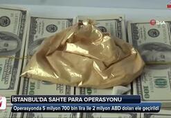 İstanbulda sahte para operasyonu: 8 gözaltı