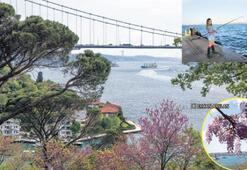 İstanbul'da baharın adresi
