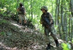 PKKlı Kawa yakalandı, JÖHler Arasın peşinde