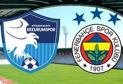 BB Erzurumspor - Fenerbahçe: 0-1