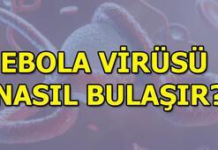 Ebola virüsü nasıl bulaşır Kimler risk altında