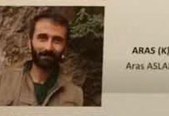 Aras adlı teröristin yakalanmasına ilişkin ilk detaylar ortaya çıktı