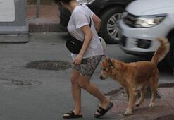 Dilan Çıtak Tatlısesin köpeğiyle imtihanı