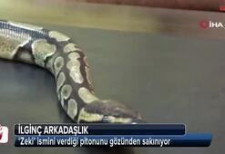 Diyarbakır'da ilginç arkadaşlık