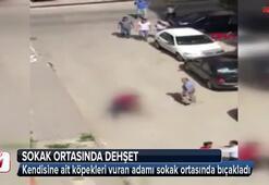 Sokak ortasında kanlı infaz