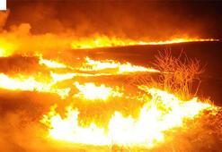 Terör örgütü YPG/PKK Tel Rıfatta sivillerin arazilerini yaktı