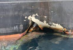 ABD, petrol tankerine saldırı için İranı suçladı
