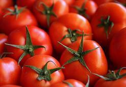 Türkiye 57 ülkeye domates ihraç etti