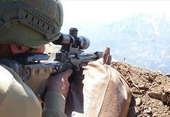 Terör örgütü YPG/PKKya mayısta ağır darbe