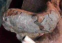 Ana karnında fosilleşmiş dinozor yumurtaları bulundu
