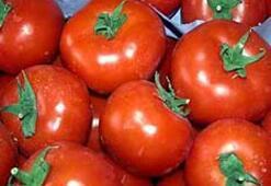 Alkolün panzehri domates