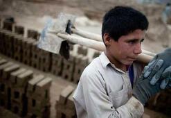 Çocuk işçi sayısı da artıyor, iş kazası da