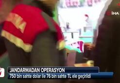 Jandarma ekipleri sahte para şebekesini çökertti