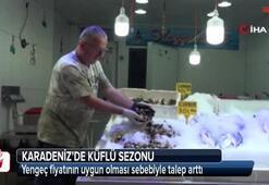 Karadeniz'de küflü sezonu