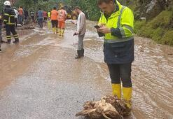 Son dakika: Trabzonu sel vurdu Ölü ve kayıplar var