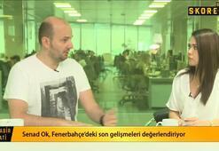 Senad Ok: Fenerbahçe Mehmet Topalı çok arayacak