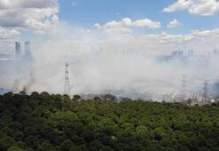 İstanbulda orman yangını kontrol altına alındı