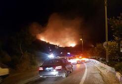 Son dakika | İzmirde korkutan bir yangın daha