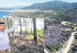 İzmir'in akciğerleri yandı