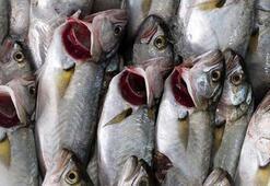 Yazın hangi balık nasıl pişirilmeli