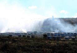 Kayseride korkunç yangın Yüz binlerce arı telef oldu