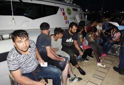 Çanakkalede 48 kaçak göçmen yakalandı